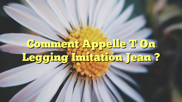 Comment Appelle T On Legging Imitation Jean ?
