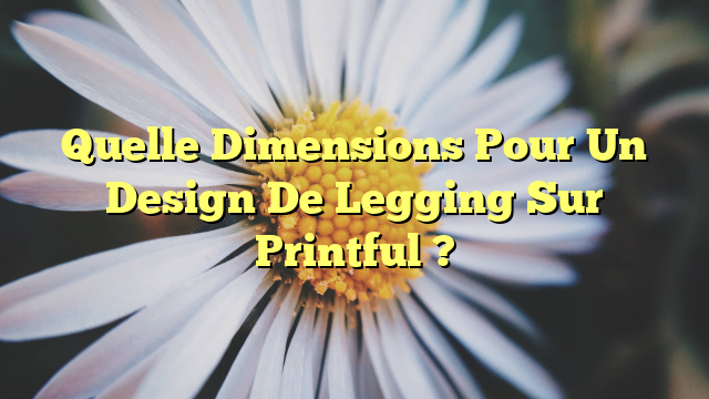 Quelle Dimensions Pour Un Design De Legging Sur Printful ?