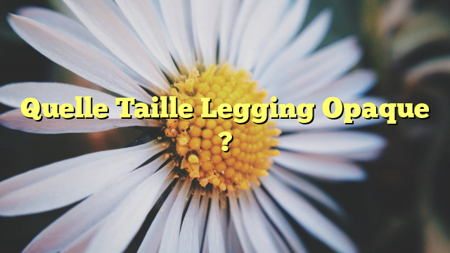 Quelle Taille Legging Opaque ?