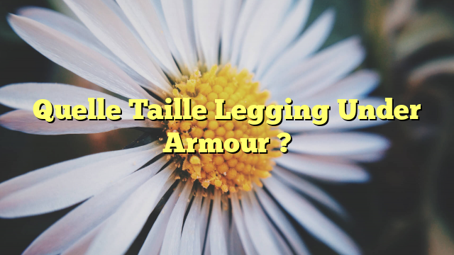 Quelle Taille Legging Under Armour ?
